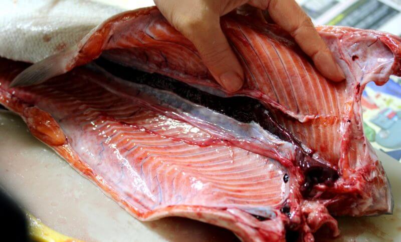 魚の内臓を取って開いている画像